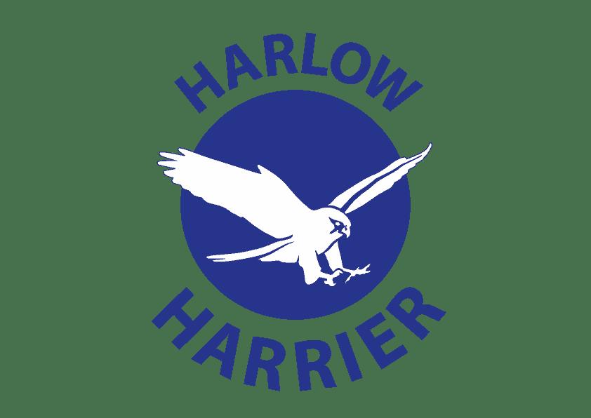 Harlow Harrier